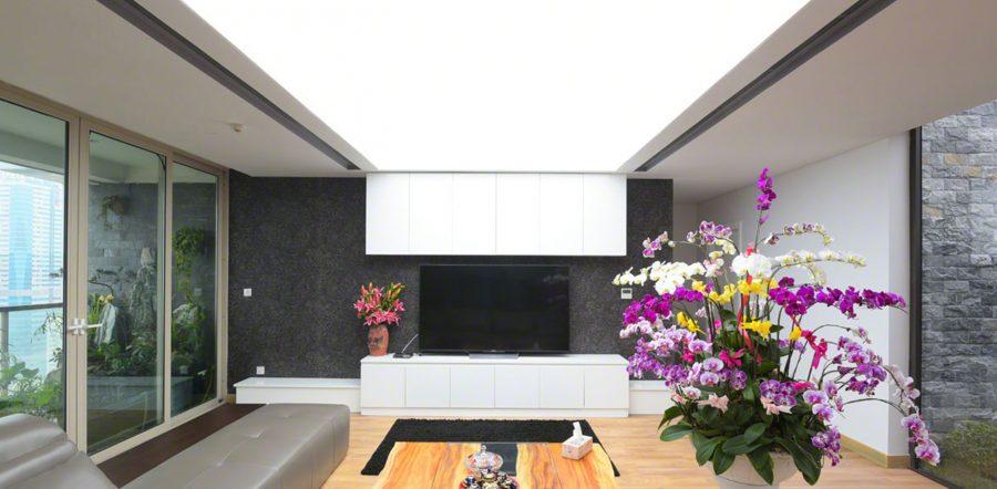 Mẫu trần căng xuyên sáng tấm trắng đơn giản cho phòng khách